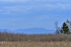 Adirondack Mountains (Roger Daigle) Tags: adirondack mountains nikon