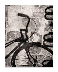 La bici (Vicent Granell) Tags: granellretratscanon bn ombres mirada visió composició personal bicicleta