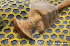 Papyrus plant (konde) Tags: anthropoid coffin mummycoffin queen 18thdynasty newkingdom deirelbahri wood cedar ancient ahmosemeritamun merytamun tt358 cachette lotus ancientegypt art