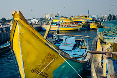 Fishing Trawer 3 (naren-photography) Tags: vizag visakhapatnam harbor fishing trawler ribbonfish shrimp yellow blue ricoh gr ii street india