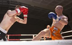 "adam zyworonek fotografia lubuskie zagan • <a style=""font-size:0.8em;"" href=""http://www.flickr.com/photos/146179823@N02/33662698335/"" target=""_blank"">View on Flickr</a>"