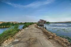 Baid Al Gaa - Qatar (zai Qtr) Tags: exploreqatar qatar zaiqtr canon water sky nature ksa uae qatarliving aamir explore outdoor friday