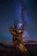 Just A Pinch of Milky Way (EricGail_AdventureInFineArtPhotography) Tags: nightscape white mountains whitemountains millkyway stars night lll lowlevellighting