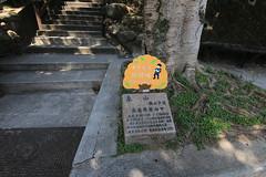 IMG_1316 (少東 兄) Tags: 爬山 福星 四獸山 虎山 獅山 豹山 象山 台北101