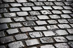 Cobblestones (Dusty J) Tags: paris france europe nikon d750 nikkor vacation art light dustin gaffk gaffke dustingaffke dustyj arenberg bike cobblestone cobblestones roubaix