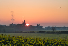 Refinery Sunrise (Rob Pitt) Tags: eastham oil refinery sunrise wirral oilseed field uk england rob pitt spring 2017