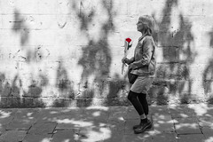 Sant Jordi's Day, Barcelona 🌹❤️📖 (Geraint Rowland Photography) Tags: saintjordi santjordi barcelona catalonia spain europe love valentinesday cultureincatalonia catalanculture barcelonasvalentinesday streetphotography rose books romance selectivecolouring wwwgeraintrowlandcouk geraintrowlandphotography woman walking streetsofbarcelona shows light chasingthelight