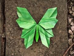 Spring Green (edg82) Tags: origami paper butterfly leaf fold green metallic slab stone garden wetfolded
