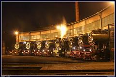 Line-up (gast)locs Dresdener Dampfloktreffen, Dresden, 8-4-2017 (Allard Bezoen) Tags: dresden lok dampflok dampflokomotieve dampf lokomotieve br baureihe 35 23 52 50 czd 03 1010 01 137 1097 8079 trein train zug loc locomotief stoomlocomotief eisenbahnmuseum dresdner dapmfloktreffen 2017 8131 3648 3552