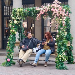 Day 118. How romantic. (Rob Emes) Tags: g7xii canon urban swing bench flower love seat couple street city london square 3652017 365 apr2017