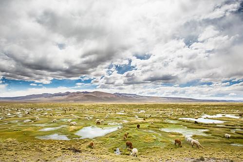 Peru_BasvanOortHR-103
