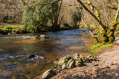 River Teign close to Fingle Bridge (Keith in Exeter) Tags: riverteign stream landscape water riverbank rock tree ripples shore beach devon nationalpark england outdoor serene castledrogo