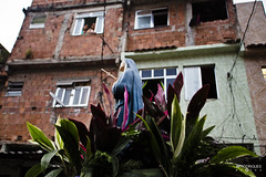 Paixão de Cristo_Sagrada Família_2017_AFR_15 (AF Rodrigues) Tags: afrodrigues foratemer fé paixãodecristo sagradafamília novaholanda procisãso favela rio riodejaneiro rj