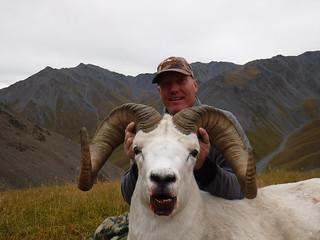 Alaska Dall Sheep Hunt & Moose Hunt 3