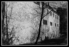 Château d'Alzey (DavidB1977) Tags: allemagne deutschland rheinlandpfalz rhénaniepalatinat alzey château nikon d610 ais nikkor 35mm bw nb monochrome