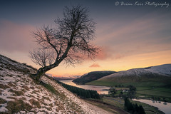 Winter Over St Mary's Loch (.Brian Kerr Photography.) Tags: scotland snow scottishborders scottishlandscapes scotspirit weather winter trees landscapephotography photography photo sunrise outdoor outdoorphotography nature naturallandscape natural availablelight a7rii sony frozen frosty cold coldmorning clouds sky skies stmarysloch loch water colour