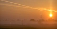 April mist (Peter Leigh50) Tags: leicestershire sunrise sky mist misty haze hazy rural uk landscape countryside farmland field hedge trees pylon