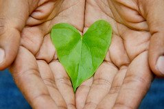 Everyday is Earthday (Juavenita ♥) Tags: earthday srilanka nature leaf heart shape hands save green gogreen