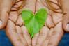Everyday is Earthday (Juavenita ♥) Tags: earthday srilanka nature leaf heart shape hands save green gogreen