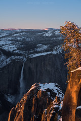 Yosemite Falls (Maddog Murph) Tags: yosemite national parks nps department interior explore create last light sunset glacier point taft navigate backcountry snow camp trek hike shoe snowshoe tree frosted covered snowy fresh winterscape falls upper glow