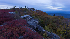 Mounds of Fall Color (Ken Krach Photography) Tags: dollysods westvirginia