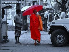 Dambulla,  Sri Lanka - February 2017 (Keith.William.Rapley) Tags: dambulla srilanka february2017 rapleykeithwilliamrapley orangetunic orange monk buddhist buddhistmonk umbrella street ceylon