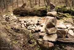 Steinmännchen (UlvargHS) Tags: steinmännchen stein baum holz moos aufgebaut sächsischeschweiz elbsandsteingebirge elbe dresden sachsen ulvarg sony