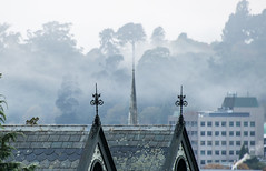 Morning mist, Dunedin (Ian@NZFlickr) Tags: mist fog autumn fall uni spire gable ornaments otago nz