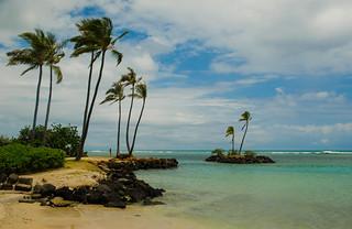 Little Hawaiian paradise
