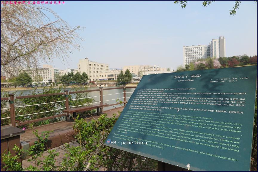 首爾建國大學 (4).JPG