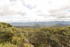 IMG_0943.jpg (mbjergstroem) Tags: grampiansnationalpark gariwerd pomonal victoria australia aus