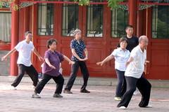 T'ai chi ch'uan (L. Felipe Castro) Tags: china park city art garden asian asia photographer martial chinese beijing center tai chi editorial fotografo downtow chuan jingshan luizfelipecastro luizfelipedasilvadecastro