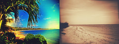 On Vacation (tvDAVEpgh) Tags: ocean vacation beach st palms islands sand diptych virgin croix usvi