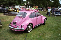Pink (Ronald_H) Tags: pink classic vw bug volkswagen weekend air beetle 1973 käfer kever fusca aircooled cooled vocho internationaal wanroij 82af05