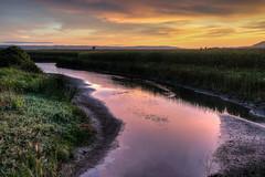 Skagit Sunset (NW Vagabond) Tags: sunset night clouds creek cloudy cornfields skagitcounty 2013