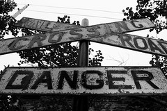 Crossing (Jane Inman Stormer) Tags: trees blackandwhite sign danger wire telephone pole railroadcrossing