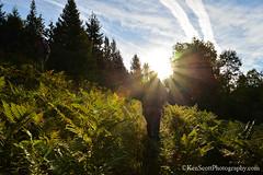 Morning Hike ... (Ken Scott) Tags: summer usa field michigan hike september sunburst preservation leelanau 45thparallel 2013 landprotection theleelanauconservancy soperpreserve singleimagecrop kenscottphotography kenscottphotographycom