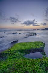 so green!! (Dhemas Aji Ramadhany) Tags: bali indonesia mengening mengeningbeach flickrandroidapp:filter=none