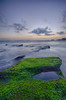 so green!! (Dhemas Aji Ramadhany) Tags: bali indonesia mengening mengeningbeach flickrandroidapp:filter=none