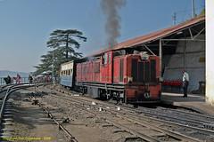 Shimla Arrival (Don Gatehouse) Tags: india shimla ng narrowgauge himachalpradesh indianrailways kalkajunction kalka–shimla zdm3192 train1ks