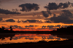 Fox Lake Dawn (BMHPhotos) Tags: sky lake water weather silhouette night clouds sunrise outdoors dawn florida cloudy horizon shoreline palmtrees oranges yellows reds lillypads