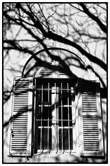 (Herv KERNEIS) Tags: windows house france tree wall shadows paca provence 13 maison mur arbre couvent apn ombres fentres tarascon barbentane montagnette provencealpesctedazur sonyrx100 abbayedefrigolet
