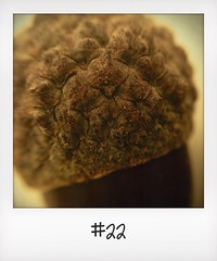 "#DailyPolaroid of 20-10-13 #22 • <a style=""font-size:0.8em;"" href=""http://www.flickr.com/photos/47939785@N05/10674040083/"" target=""_blank"">View on Flickr</a>"