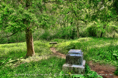 Moss (Immortal Dreams) Tags: white cemetery graveyard lady forest illinois moss pond woods grove madonna headstone father ghost lagoon haunted bachelor dreams turnpike fulton immortal preserve vandals bachelors mendenhall capone rubio midlothian batchelor foskett bacheldor