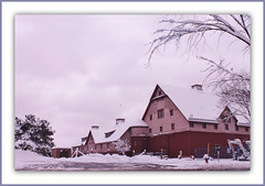 Winter On The Farm (bigbrowneyez) Tags: november trees windows winter sky snow canada cold barn cloudy farm branches gray snowstorm messy neve inverno freddo farma winteronthefarm ottawaontario