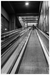 352A/365 | Subiendo. (cefuenco) Tags: blackandwhite blancoynegro up stairs market 28mm streetphotography supermarket 365 escaleras supermercado sube a700 originalphotography proyecto365 fotografacallejera originalphotographer photographersontumblr