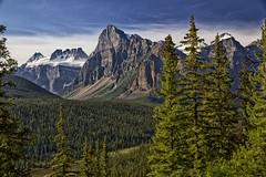 Mount Babel landscape (John Andersen (JPAndersen images)) Tags: trees summer glacier alberta banff morainelake towerofbabel wenkchemna valleyofthe10peaks mountbabel