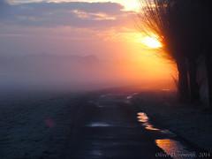 Sonnenaufgang (Oliver Deisenroth) Tags: nature fog sunrise nebel natur foggy sonnenaufgang olympusstylus1