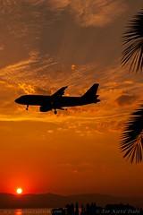 OE-LOA, Airberlin (op. by Niki),Airbus A319-112 - cn 3661. (dahlaviation.com Thanks for over 1 !! million view) Tags: sunrise airplane aircraft aviation airplanes greece airbus corfu kerkyra niki spotting aircrafts airberlin a319 cfu lgkr