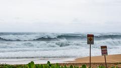2144200_RAW (Mr Inky) Tags: hawaii kauai hanalei oly tunnelsbeach haenastatepark panasonic1235mmf28